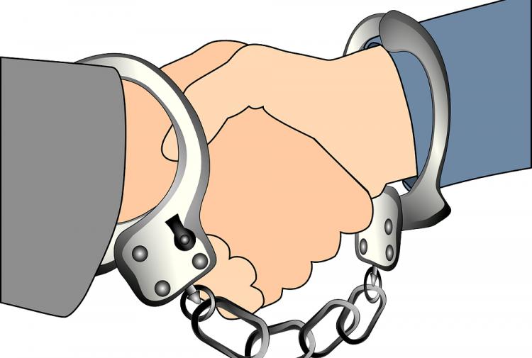 Начальника Уфимской ветеринарной станции арестовали завзятку