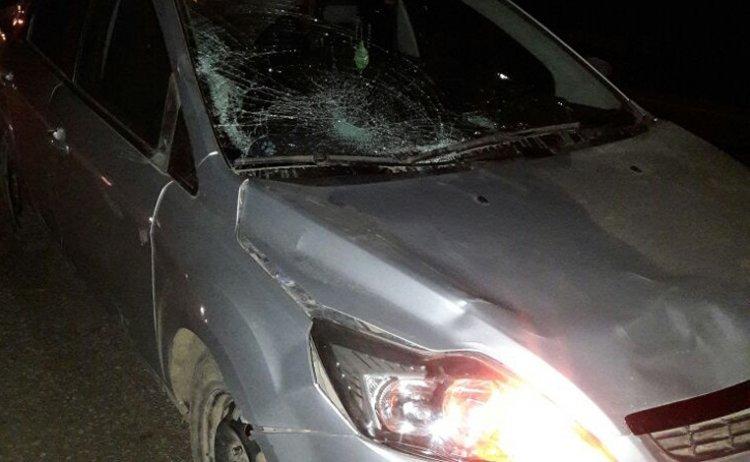 ВБашкирии 23-летний шофёр «Форд Фокус» насмерть сбил чету пожилых людей