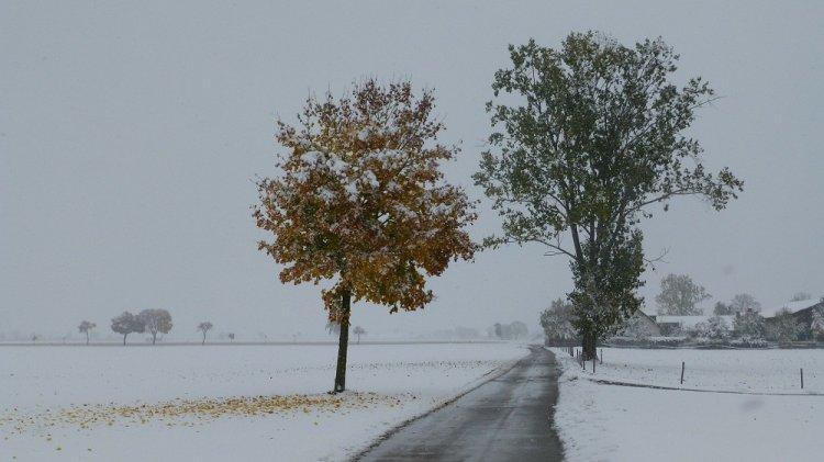 ВБашкирии из-за мокрого снега итумана видимость на трассах  будет затруднена