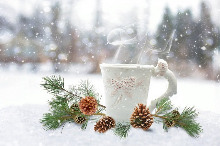 В 1-ый день нового года вОренбуржье вновь придут метели— МЧС