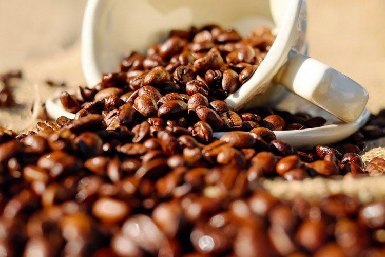 Названа продлевающая жизнь ежедневная порция кофе
