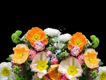 Flovered дарит скидки на новую коллекцию красочных букетов к 1 сентября