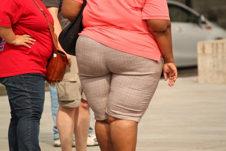 Лишний вес провоцирует развитие 16 видов рака