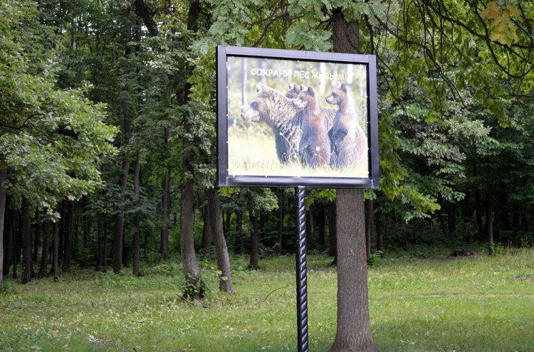 Башкирская природоохранная межрайонная прокуратура проведет «горячую линию»