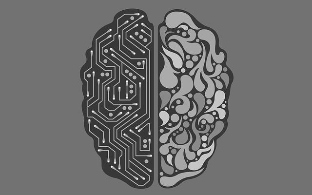 Психологи объяснили, почему в середине дня отключается мозг