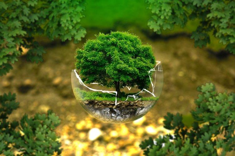 Полицейские Стерлитамака приняли участие в проекте «Всероссийский экологический субботник «Зелёная Россия»
