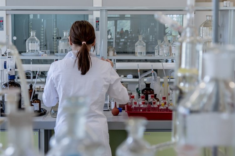 Ученые узнали, какой элемент в теле заставляет жить долго и дает защиту от болезней