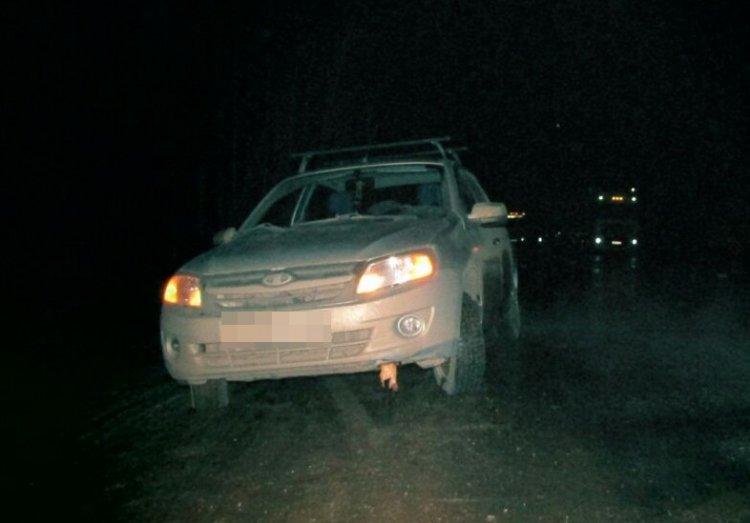 В Башкирии «Лада Калина» сбила женщину, а «Лада Гранта» ее переехала