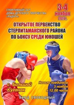 В Стерлитамакском районе пройдет первенство по боксу