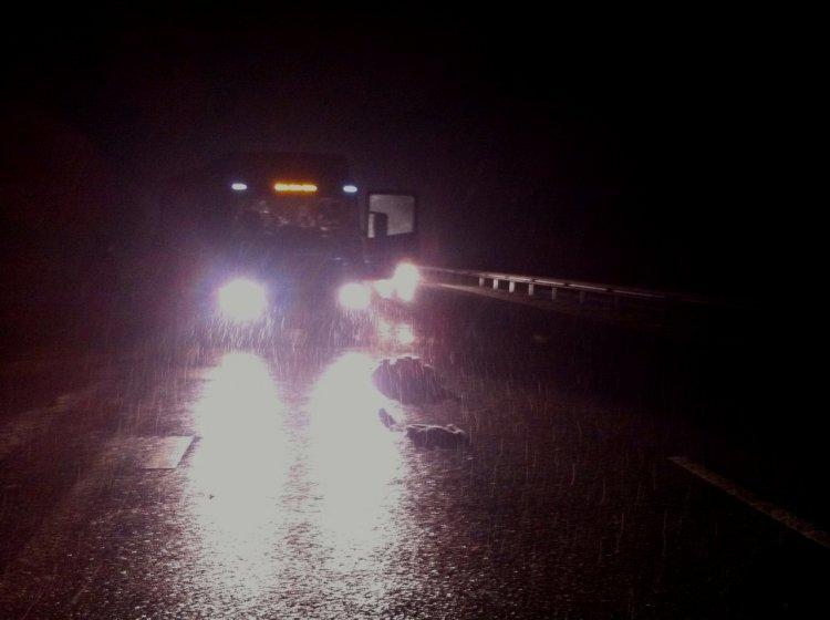 Трагедия на башкирской трассе: водитель грузовика насмерть сбил пожилую женщину