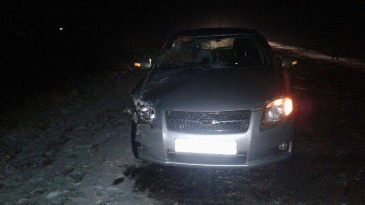 В Стерлитамакском районе под колесами автомобиля погиб 44-летний мужчина