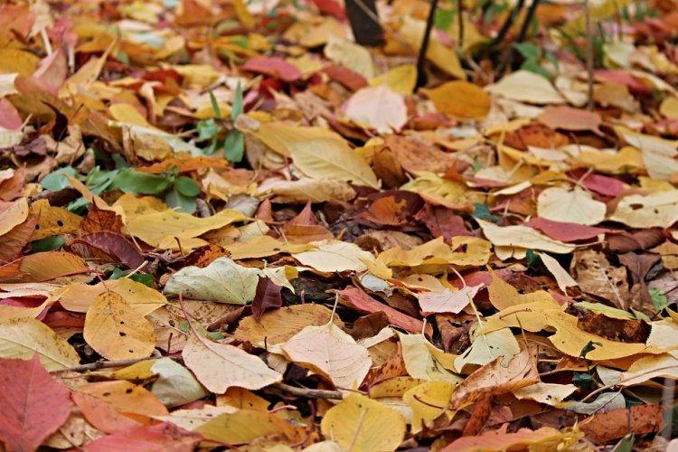 Синоптики сообщили, какая погода ждет жителей Башкирии 1, 2 и 3 декабря