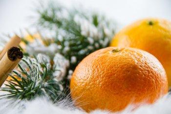 Новогодние мандарины и апельсины станут дешевле на 20%