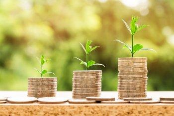 5 правил грамотного инвестирования