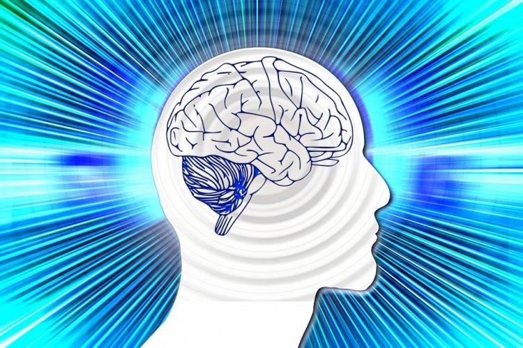 Ученые нашли самый простой способ улучшить память