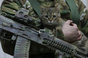 В Башкирии стартовала акция «Безопасный Новый год»