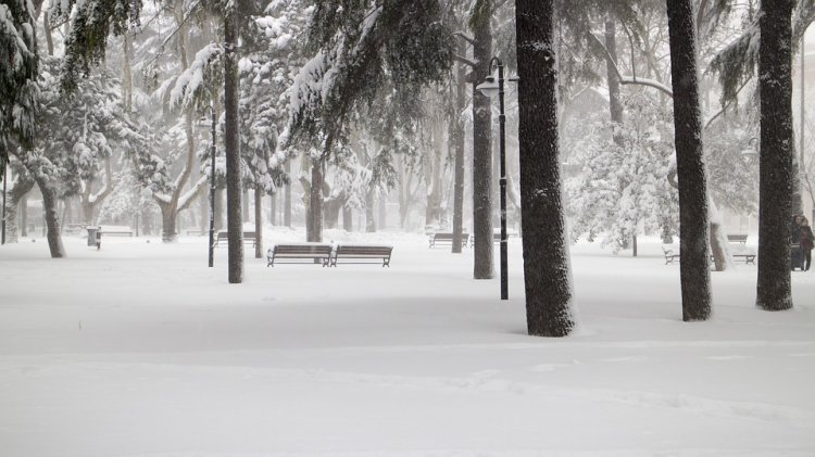Стала известна погода на февраль