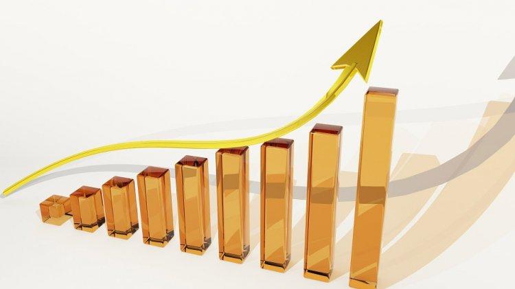 Виды и ключевые особенности депозитных счетов