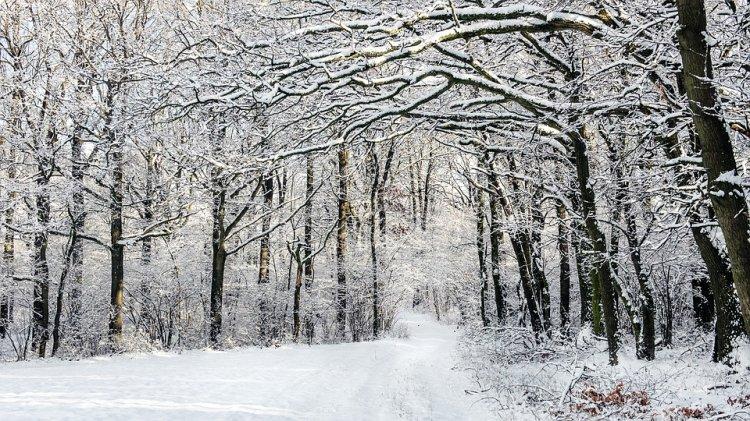 Синоптики сообщили о погоде в Башкирии 29, 30 и 31 января