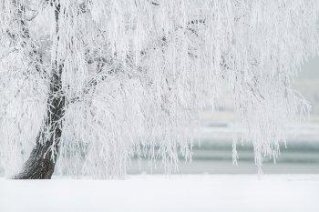 Жителям Башкирии напомнили, при какой температуре воздуха дети могут не ходить в школу