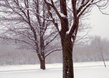 МЧС Башкирии вновь предупреждает об ухудшении погоды