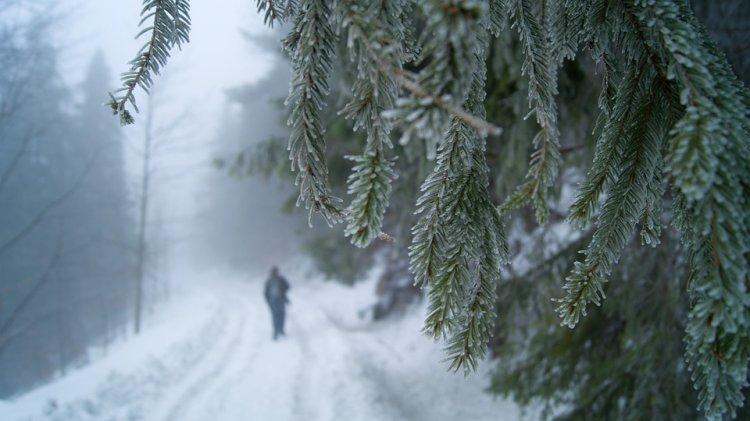 Синоптики сообщили о погоде в Башкирии 2, 3 и 4 февраля