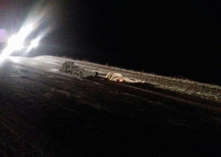 В Стерлитамакском районе Башкирии водитель насмерть сбил пешехода и скрылся