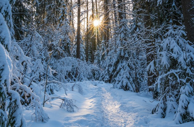 Башгидромет: московского снегопада в республике не будет