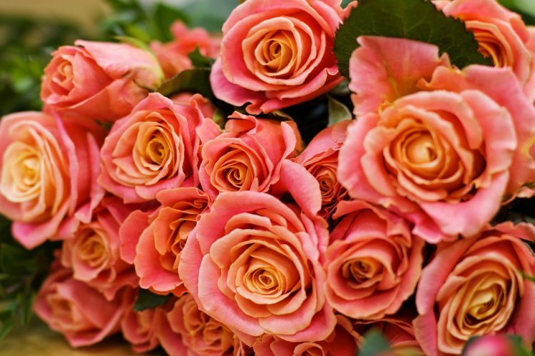 Уфимец похитил 45 роз и подарил незнакомке