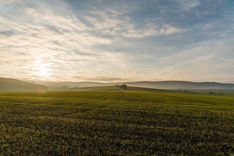 В Правительстве Башкирии обсудили готовность аграриев к весенним полевым работам