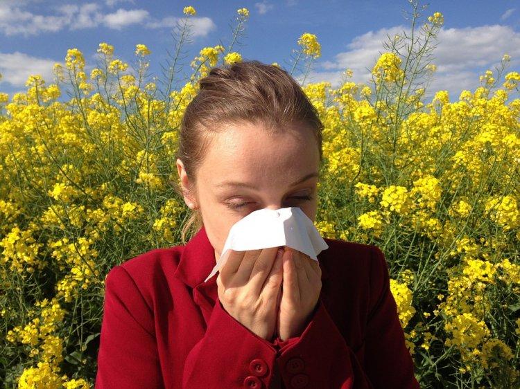 Медики нашли способ защитить людей от аллергии