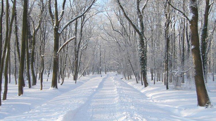 Синоптики сообщили, какая погода ждет жителей Башкирии 2, 3 и 4 марта