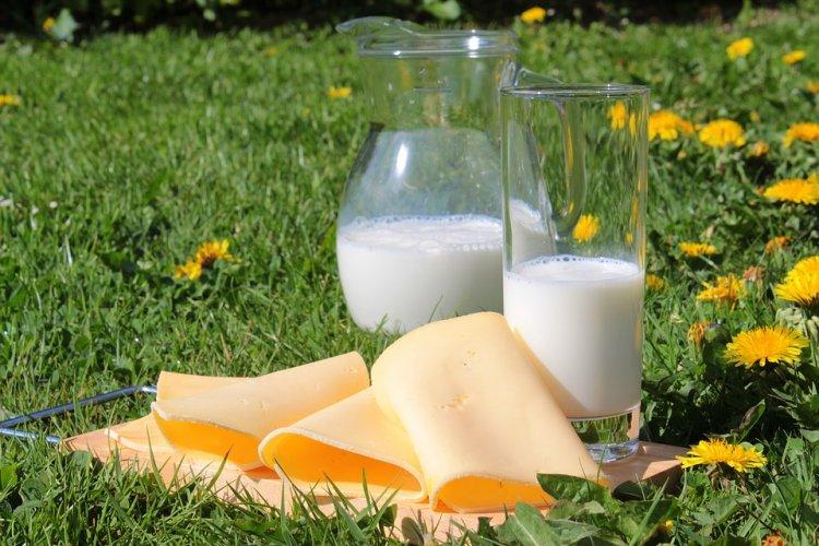 Названо самое вкусное российское молоко
