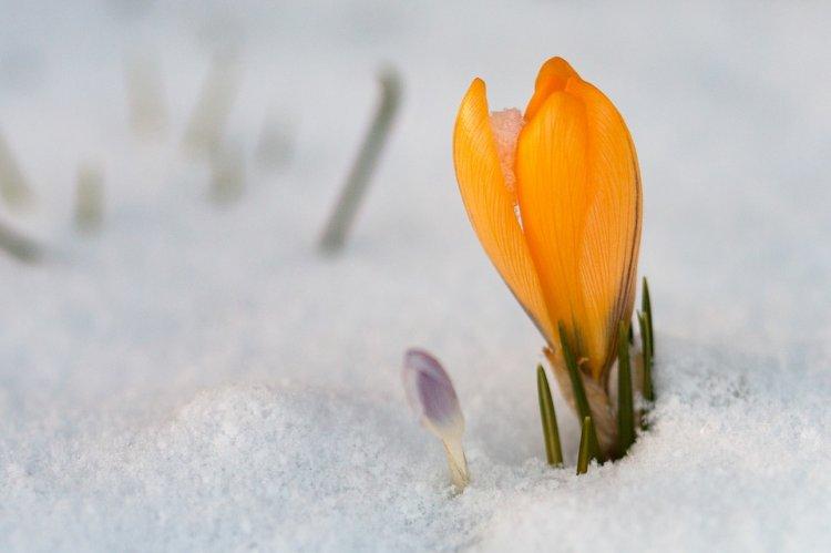 Синоптики сообщили о погоде в Башкирии 23, 24 и 25 марта