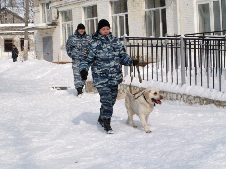 В Уфе полицейская служебная собака показала мастер-класс школьникам