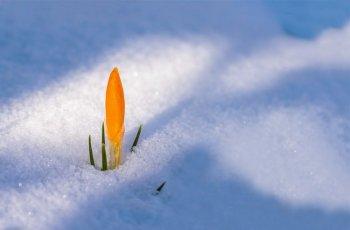 Синоптики сообщили о погоде в Башкирии 19, 20 и 21 марта