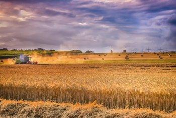 Башкирские аграрии получат 560 млн рублей дополнительной поддержки из регионального бюджета