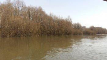 Уфимские спасатели нашли тело пропавшего 29-летнего подводного охотника