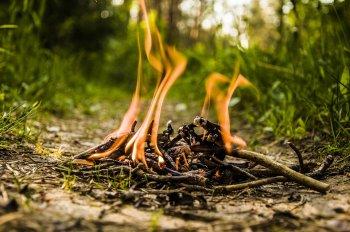 Жителям Башкирии запретили жечь траву, выбрасывать окурки и разводить костры вблизи дорог