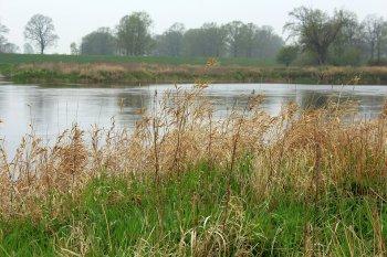 В Башкирии молодой мужчина, убегая от полиции, утонул в реке