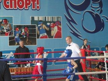 В Стерлитамакском районе прошел памятный турнир по боксу