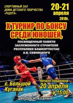 В Стерлитамакском районе пройдет открытый турнир по боксу среди юношей