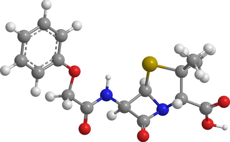 В Уфе разрабатывают новые высокоэффективные противомикробные препараты