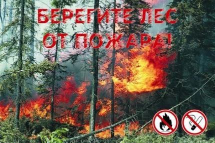 11 мая в отдельных районах Башкирии ожидается IV класс пожароопасности