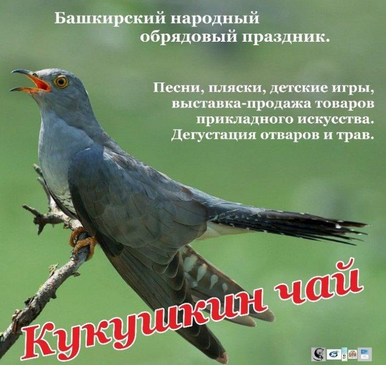 В Уфе пройдет Башкирский народный обрядовый праздник «Кукушкин чай»