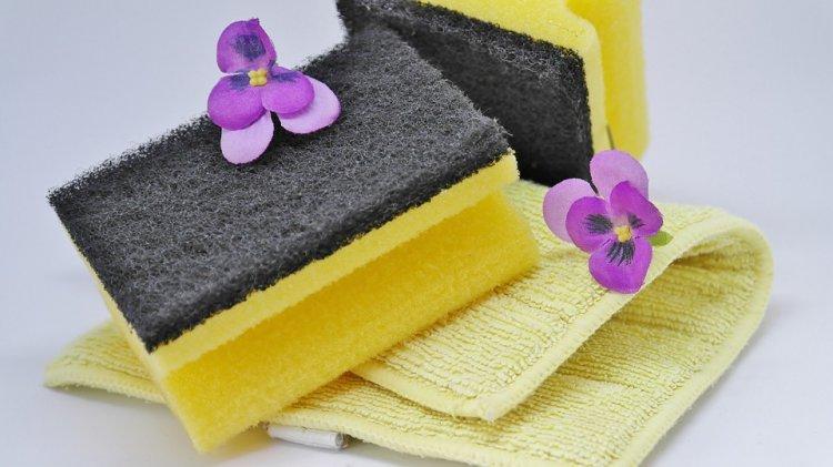 Чистота в доме ведет к тяжелой болезни