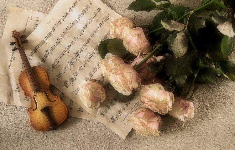 В Уфе состоится II Международный конкурс скрипачей Владимира Спивакова