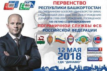 В Уфе пройдет Первенство Республики Башкортостан по ММА