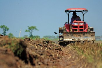 В Башкирии трактор переехал спящую в поле 43-летнюю женщину