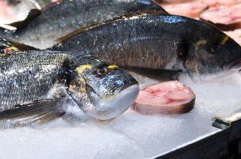 Мясо и рыба исчезнут с российских прилавков